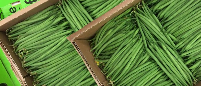 Fine beans packs for Export